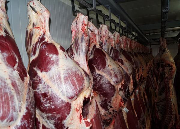 podwieszone mięso