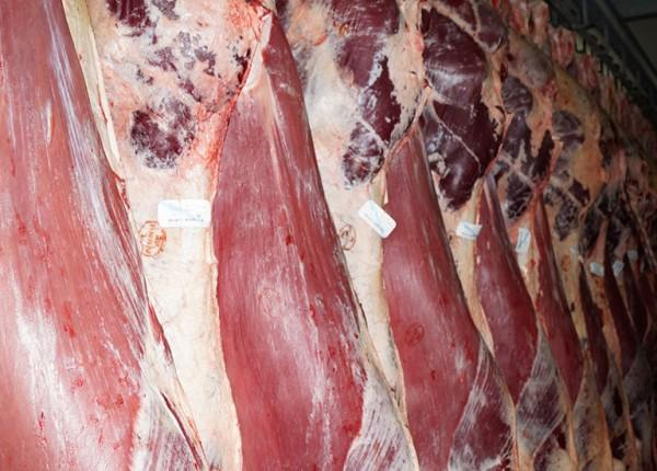 mięso galeria